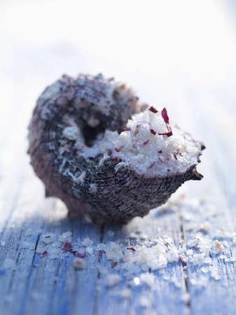 sel: Fleur de sel sea salt in a shell