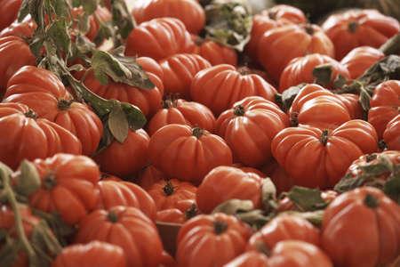 coeur: Hoop van Coeur de Boeuf tomaten LANG_EVOIMAGES