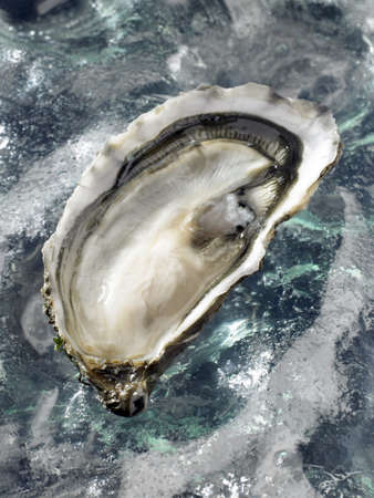 hollow: Hollow oyster