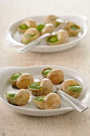 Snails stuffed with garlic and parsley Stock Photo - 17027210