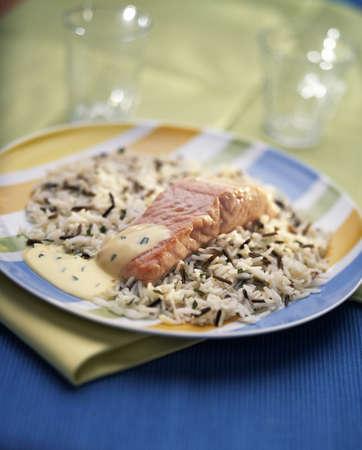 Salmon with wild rice Stock Photo - 17027699