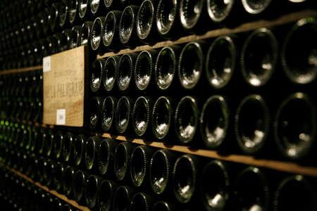 alignement: Bottles of wine on shelves in a cellar LANG_EVOIMAGES