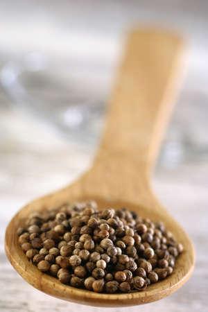 Coriander seeds Stock Photo - 17028408