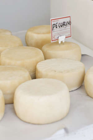 Maturing Pecorino cheeses Stock Photo - 17028666