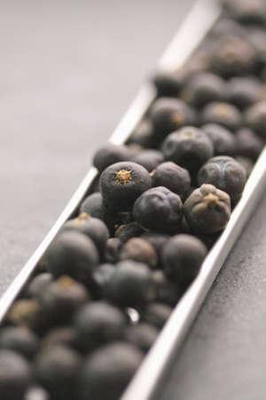 Juniper berries Stock Photo - 17028704