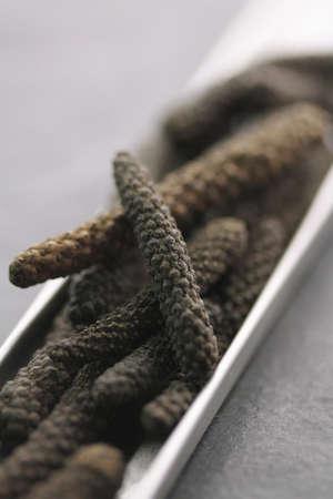 Indonesian long black peppercorns Stock Photo - 17028720