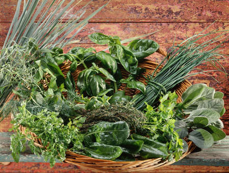 Basket of fresh herbs Stock Photo - 17028864