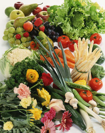 Vegetable and flower composition Stock Photo - 17028875