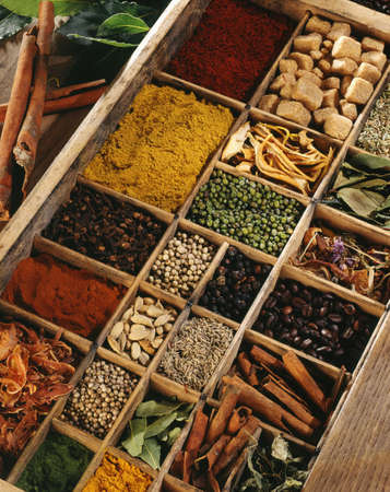 Spices in a compartment box Stock Photo - 17028902