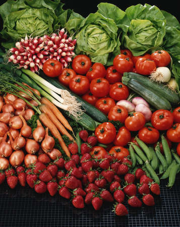 Vegetable composition Stock Photo - 17028907
