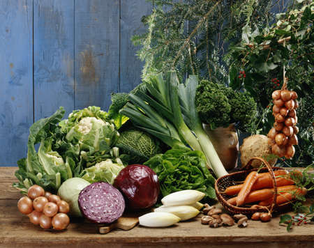 Vegetable composition Stock Photo - 17028915
