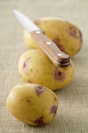 alignement: Blue Belle potatoes LANG_EVOIMAGES