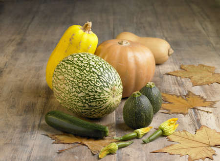 noix: Selection of squash and marrows