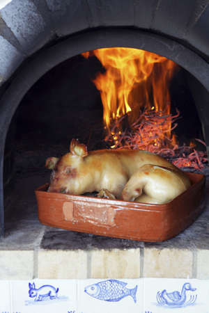 suckling pig: Suckling pig roast on a wooden fire