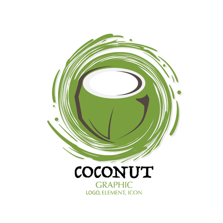 fruit coconut graphic element design logo key visual water splash background