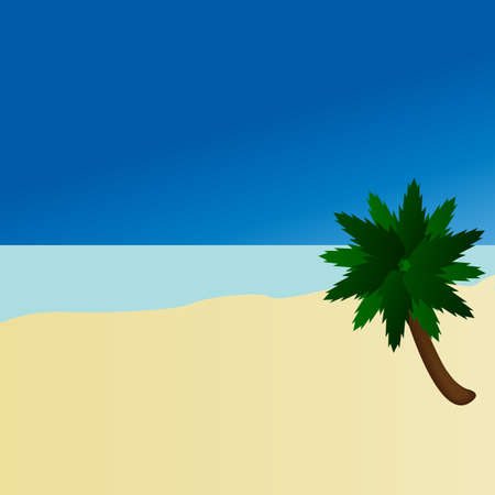 lone palm tree on a beach Stock Photo