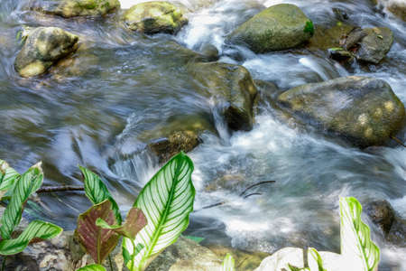 River in a tropical landscape, Chiang Mai province, northern Thailand, Asia