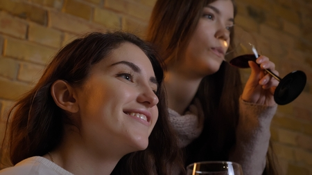 Closeup side view portrait of two young pretty women watching TV and drinking wine smiling happily in a cozy apartment indoors
