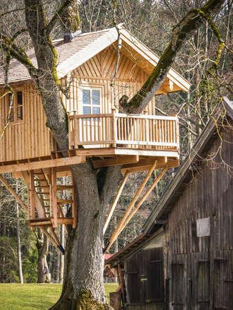 house and tree: beautiful tree house (near hamburg - germany)