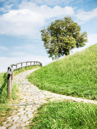 forked road: old cobblestone footpath at a park in  vienna - nice background Stock Photo