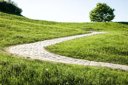 old cobblestone footpath at a park