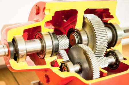 cross section of a car gear Stock Photo - 17596655