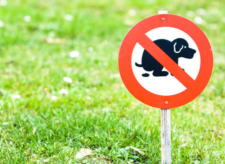 no dog excrements sign at a front yard photo
