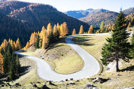 curve at the european alps Stock Photo - 17847485