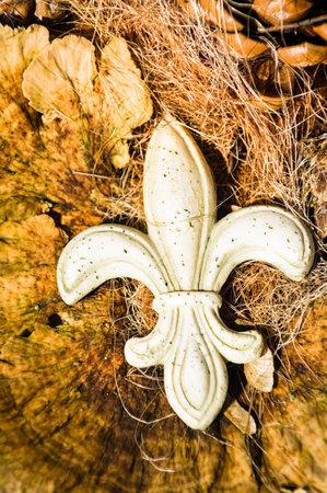 antique fleur de lis - closeup