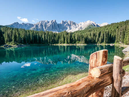 trees photography: karerlake in italy - at the background the dolomites