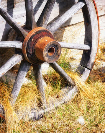 wagon: old wagon wheel at a farm