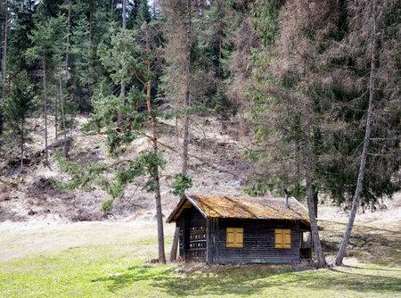autmn: old log cabin at the european alps - beehive hut