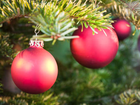 typical christmas baubles at a tree photo