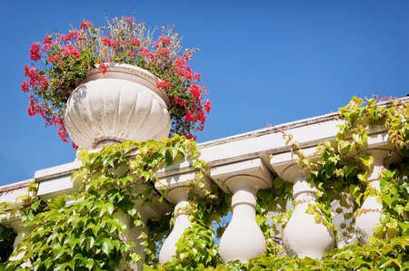 balustrade and ivy in front of blue sky Stock Photo