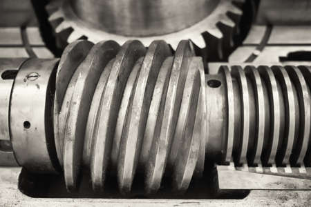 worm gear: old worm gear close up
