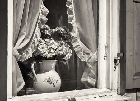 old flower pot at a window photo