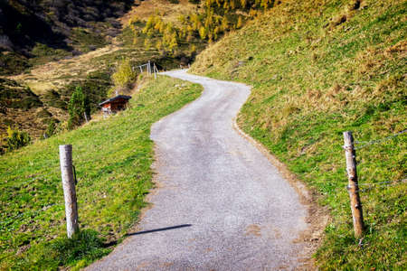 old country road at the alps photo