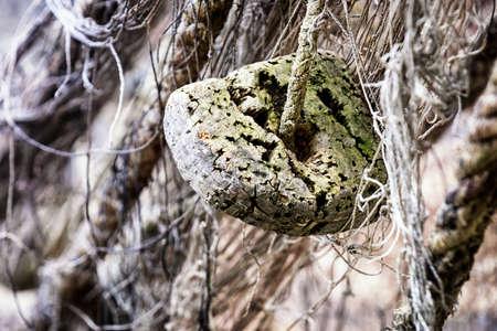 trawler net: close-up of an old fishing net Stock Photo
