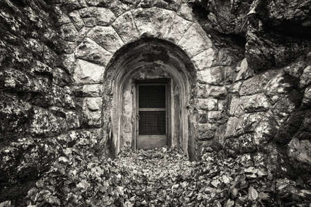 old entrance at a forest Stock fotó