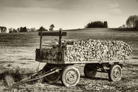 firewood: old hanger with firewood at a field