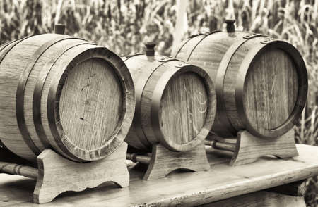 wood staves: old wooden oil casks in a row Stock Photo
