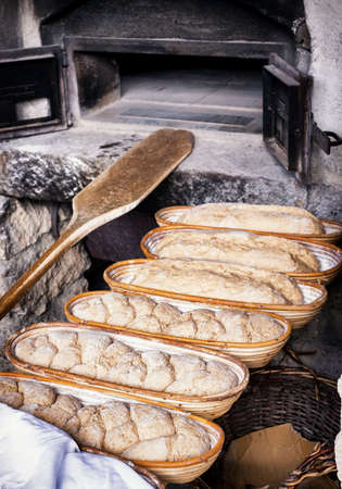haciendo pan: hacer pan - vendimia - antigua panader�a