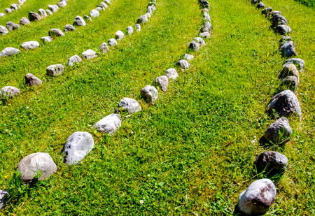 rows of rocks at a meadow