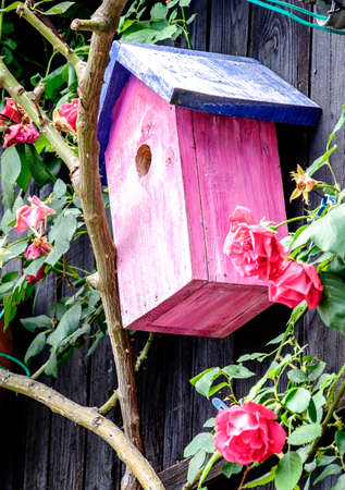 typical wooden birdhouse - closeup - photo Stock Photo