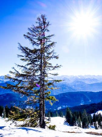 benedict: brauneck mountain near bad toelz - bavaria