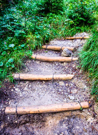 weathered: steps at a footpath in a forest