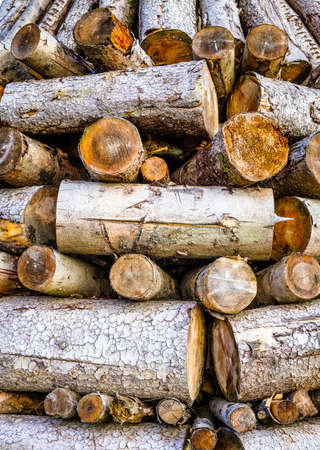 outdoor fireplace: heap of tree trunks for a typichal easterfire
