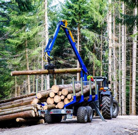 森で木とトランスポーター