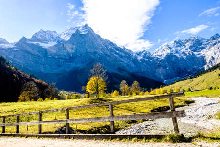 larch tree: karwendel mountains in austria - small valley called engalm
