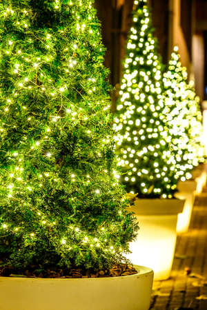 illuminated christmas tree - close up Stock Photo